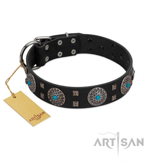 """Boundless Blue"" FDT Artisan Black Leather Mastiff Collar with Chrome Plated Brooches and Square Studs"