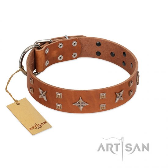 """Dreamy Gleam"" FDT Artisan Tan Leather Mastiff Collar Adorned with Stars and Squares"