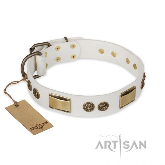 """Golden Avalanche"" FDT Artisan White Leather Mastiff Collar with Old Bronze Look Plates and Circles"