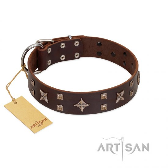 """Stars in Sands"" Modern FDT Artisan Brown Leather Mastiff Collar with Studs and Stars"