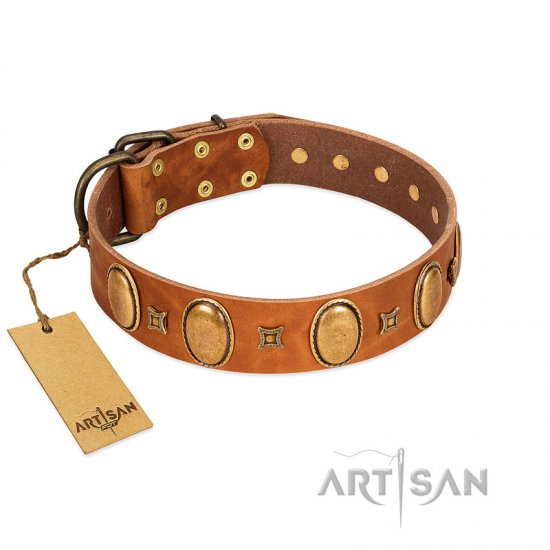 """Glossy Autumn"" Designer Handmade FDT Artisan Tan Leather Mastiff Collar with Ovals and Studs"