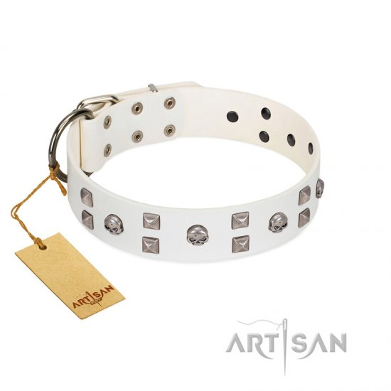 """Rock the Sky"" Durable FDT Artisan White Leather Mastiff Collar with Chrome-plated Decorations"
