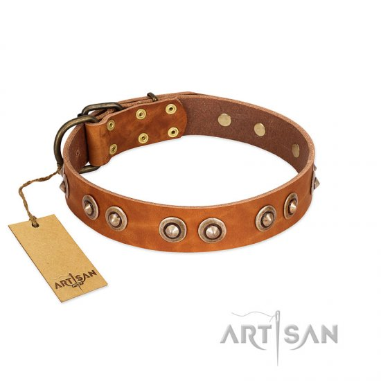 """Precious Relic"" FDT Artisan Tan Leather Mastiff Collar Adorned with Old Bronze Look Studs"