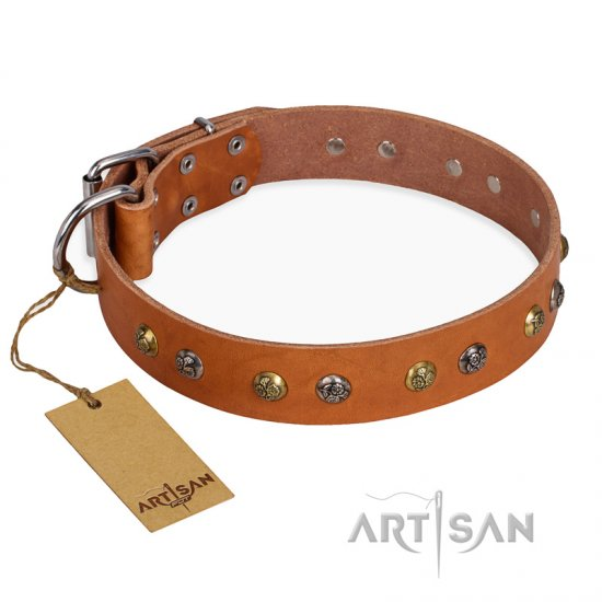 """Golden'n'Silver Luxury"" FDT Artisan Leather Mastiff Collar with Engraved Studs"
