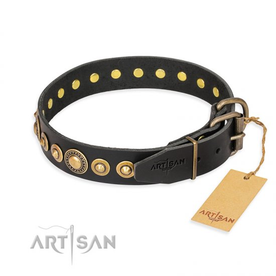 """Gold Mine"" FDT Artisan Black Leather Mastiff Collar with Amazing Bronze-Plated Round Studs"