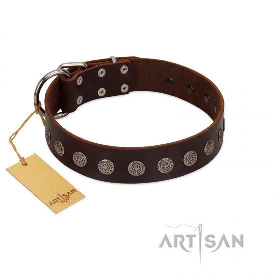 """Starry-Eyed"" Best Quality FDT Artisan Brown Designer Leather Mastiff Collar with Small Plates"