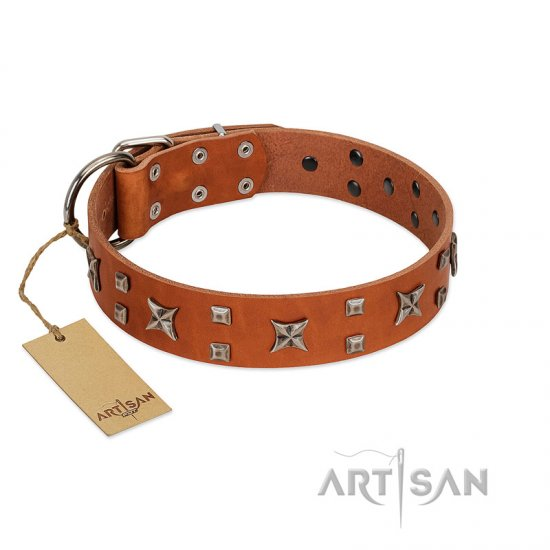 """Faraway Galaxy"" FDT Artisan Tan Leather Mastiff Collar Adorned with Stars and Squares"