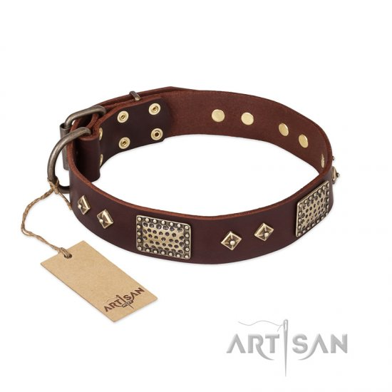 """Loving Owner"" FDT Artisan Decorated Leather Mastiff Collar with Plates and Studs"