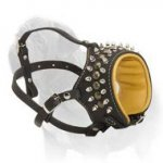 Mastiff Universal Solution - Leather Nappa Leather Padded Muzzle with Spikes & Studs