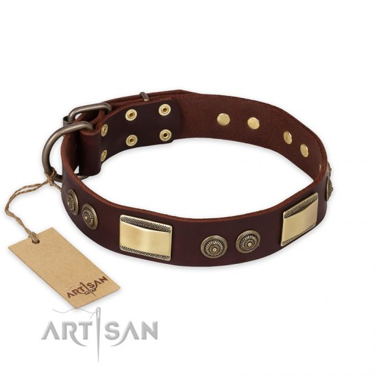 """Golden Stones"" FDT Artisan Brown Leather Mastiff Collar with Old Bronze Look Plates and Circles"
