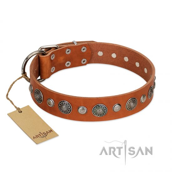 """Natural Beauty"" FDT Artisan Tan Leather Mastiff Collar with Shining Silver-like Studs"