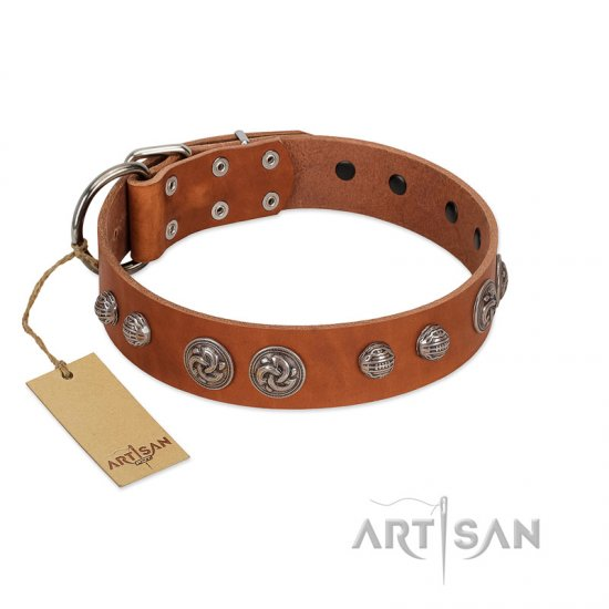 """Era Infinitum"" FDT Artisan Tan Leather Mastiff Collar Adorned with Chrome-plated Circles"