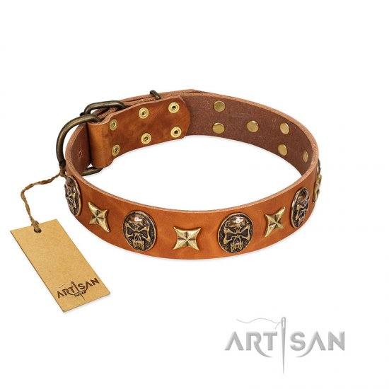 """Rockin' Doggie"" FDT Artisan Tan Leather Mastiff Collar Adorned with Stars and Skulls"
