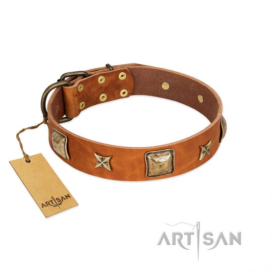 """Celtic Tunes"" FDT Artisan Tan Leather Mastiff Collar Adorned with Stars and Squares"
