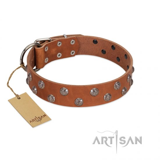 """Waltz of the Flowers"" Handmade FDT Artisan Tan Leather Mastiff Collar with Chrome-plated Engraved Studs"