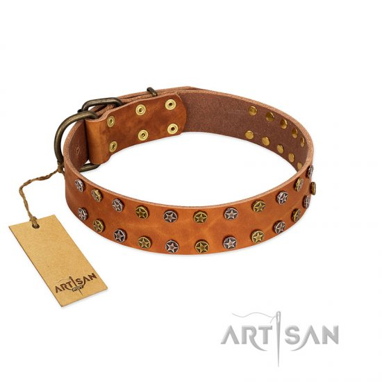 """Walk and Shine"" FDT Artisan Tan Leather Mastiff Collar with Antiqued Studs"