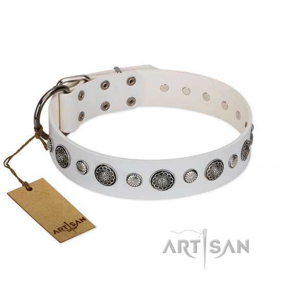 """Fluff-Stuff Beauty"" FDT Artisan White Leather Mastiff Collar with Silver-like Studs and Conchos"