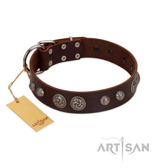 """Choco Brownie"" FDT Artisan Brown Leather Mastiff Collar Adorned with Silver-Like Conchos"