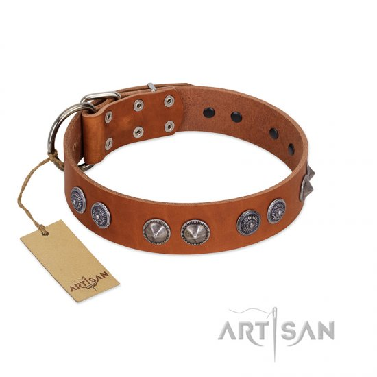 """Silver Necklace"" Incredible FDT Artisan Tan Leather Mastiff Colar with Silver-Like Adornments"