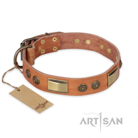 """Lost Desert"" FDT Artisan Leather Mastiff Collar with Brass Decorations"