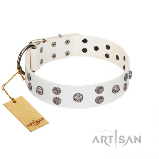 """Edgy Look"" FDT Artisan White Leather Mastiff Collar with Silver-like Skulls"