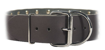 2 inch wide All Weather Collar for Mastiff-Leather Collar