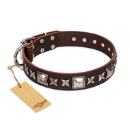 'Perfect Impression' FDT Artisan Mastiff Brown Leather Dog Collar with Silvery Square Studs - 1 1/2 inch (40 mm) Wide