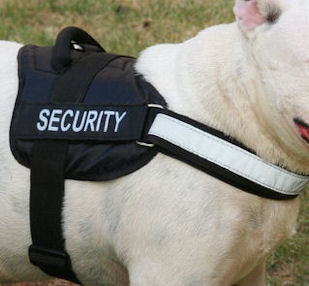 Reflective NYLON DOG HARNESS, All Weather Harness for Mastiff