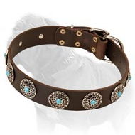 Western Leather Dog Collar w/h turquoise stones for Mastiff