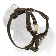 Studded Mastiff Dog Harness for Safe Walks