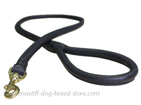 Matching Rolled Leather Dog Lead for Mastiff