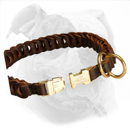 Braided Leather Choke Collar for Mastiff Training and Behavior Correction