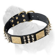 Leather Dog Collar with Spikes, Studs and Plates Mastiff Training/Walking