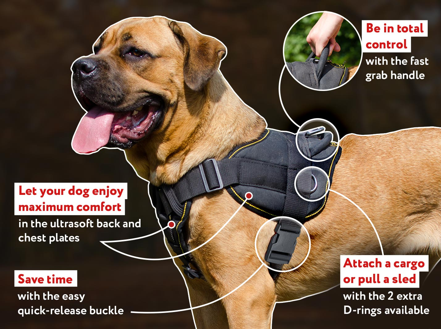 Mastiff Pulling, Tracking, Walking and Training Nylon Harness