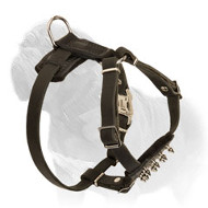 Leather Spiked Mastiff Dog Harness for First Walks