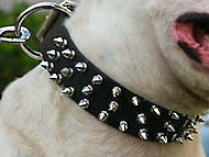 Custom Leather Spiked Dog Collar -3 Rows of spikes