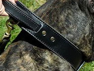 2 ply leather dog collar with handle - Mastiff training collar