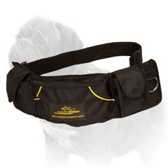 'Swift Reward' Mastiff Dog Training Nylon Treat Pouch