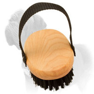 'Brush & Go' Mastiff Grooming Bristle Brush