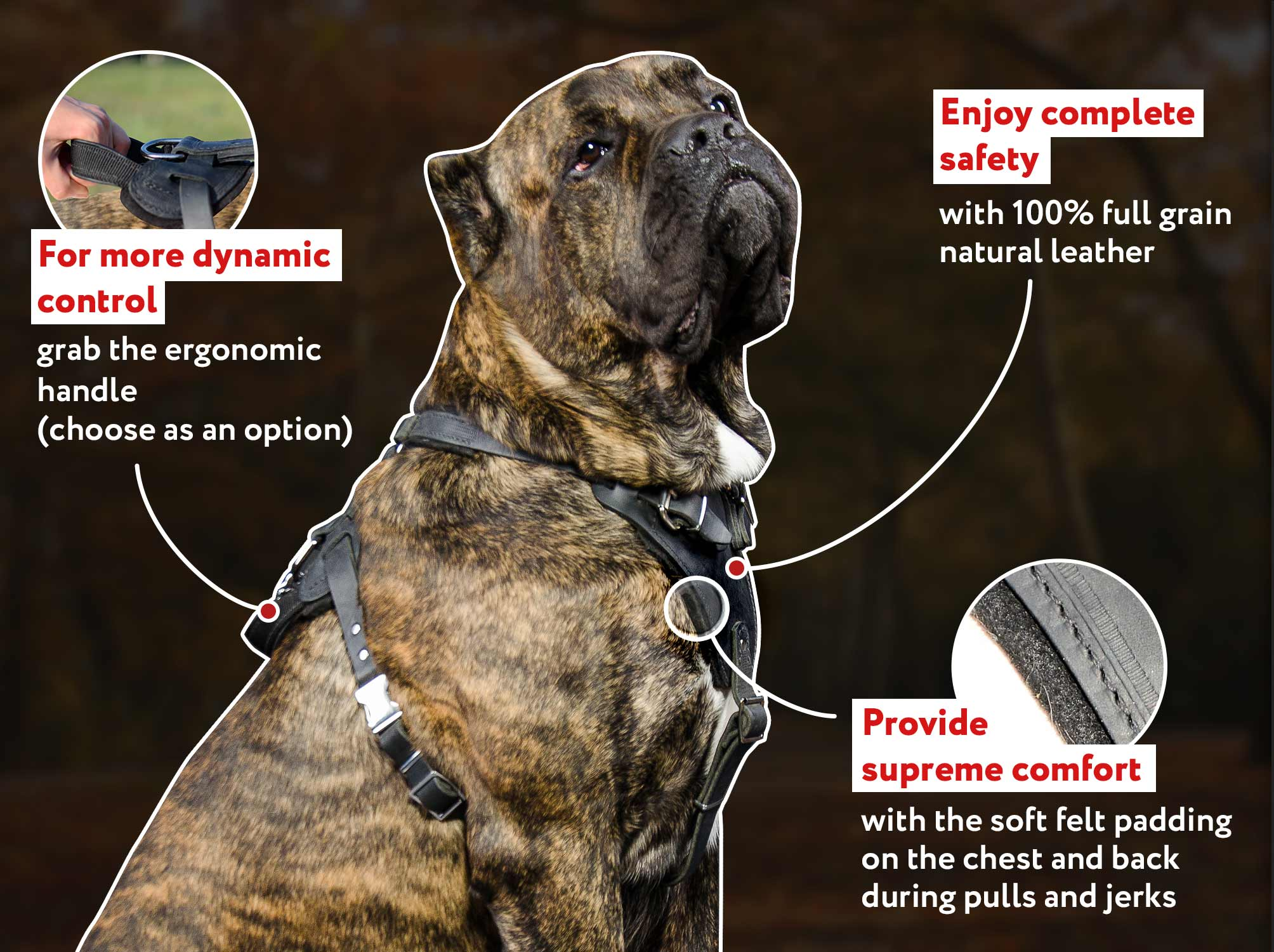 True Leather Mastiff Agitation Harness with Extremely Soft Chest