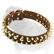 Fashion Leather Dog Collar with Goldish Spikes and Nickel Studs for Mastiff Walking