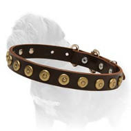Gorgeous Wide Leather Dog Collar With Dotted Circles for Mastiff Walking