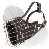 Wire Cage & Leather Dog Muzzle with Padding for Mastiff Training