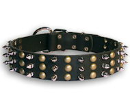 spiked and studded leather dog collar for large breeds