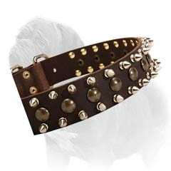 Decorated leather collar
