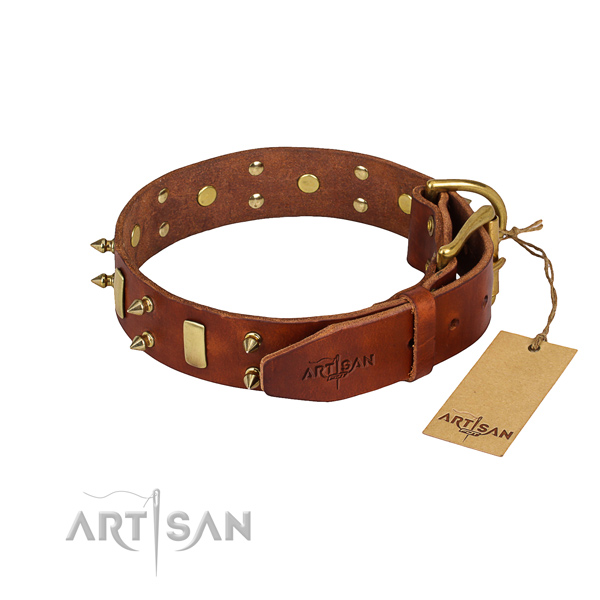 Sturdy leather dog collar with riveted fittings