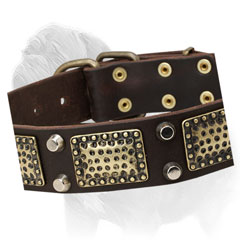 Mastiff dog collar, hand set buckle and D-ring