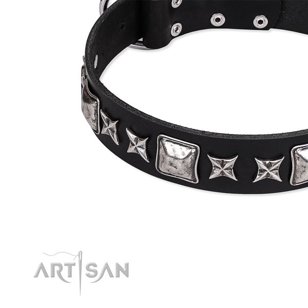 Full grain natural leather dog collar with exceptional adornments