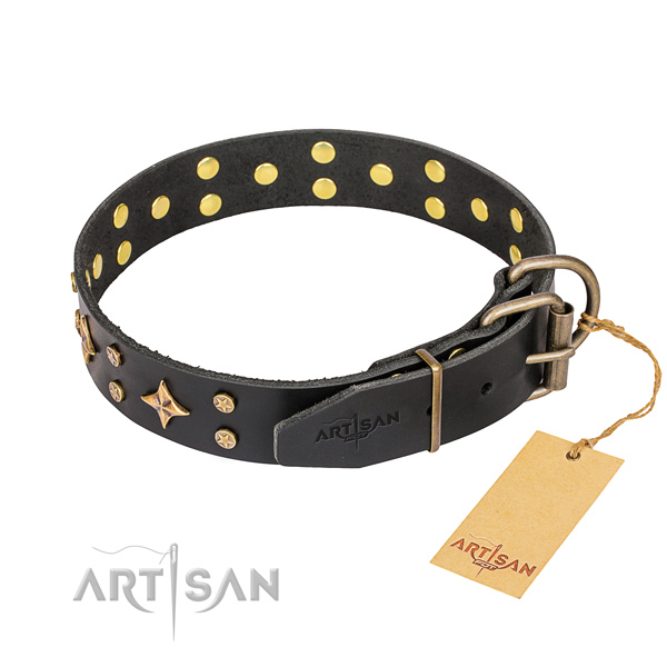 Walking natural genuine leather collar with embellishments for your dog