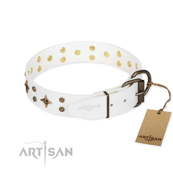 Walking full grain leather collar with studs for your doggie